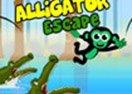 Alligator Escape