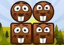 Beaver Blocks 2