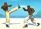 Capoeira Fighters 1