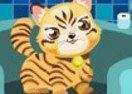 Cat Breeder 2