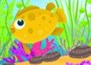 Design Your Aquarium