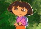 Dora Waterfall Jump!