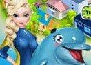 Elsa Dolphin Show
