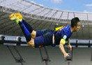 Flappy Van Persie Brasil 2014