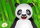 Panda Pet Care