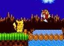 Pikachu in Sonic 1