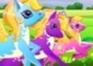 Pony Run