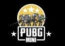 PUBG Mini