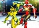 Robot Ring Fighting Wrestling