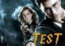 Test Harry Potter: ¿Qué personaje eres?