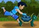 Turtle Home Run