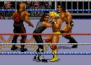 WWF Royal Rumble